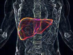 CT protokoli za fokalne promene lezije u jetri 1